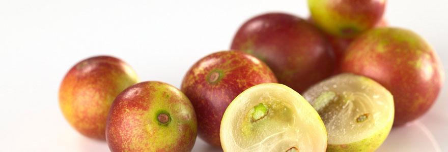 Fruit d'Amazonie